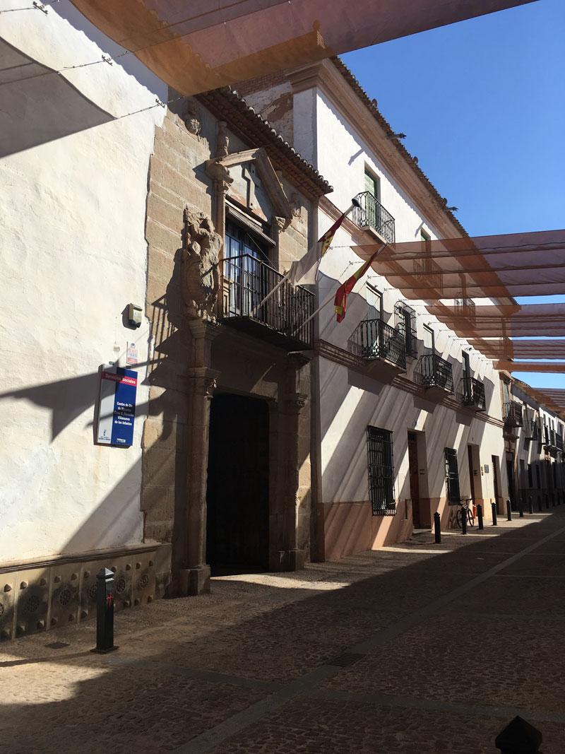 Visitas Guiadas por Villanueva de los Infantes.